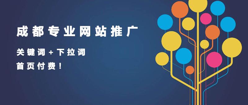 成都市专业网站建设推广的公司.jpg