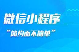 小程序开发公司哪一个好,四川专业的小程序开发公司