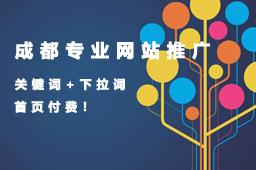 成都市专业网站建设推广的公司