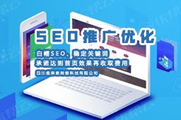 绵阳网站SEO推广优化公司哪家好