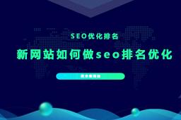 新建的网站如何做seo排名优化